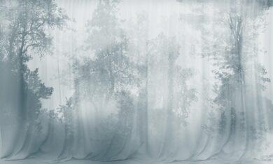 Mystic Forest tapeta na wymiar przedstawiająca zamglony las Byzantine Splendor