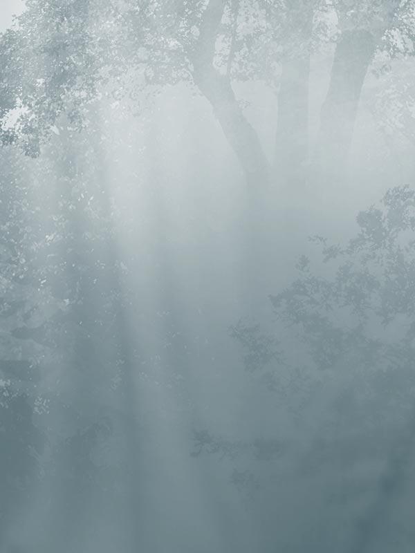 Mystic Forest tapeta na wymiar Byzantine Splendor
